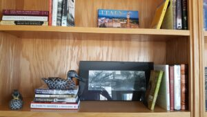 Bookcase Composition #5